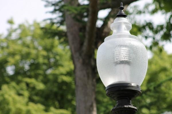 public garden lamp