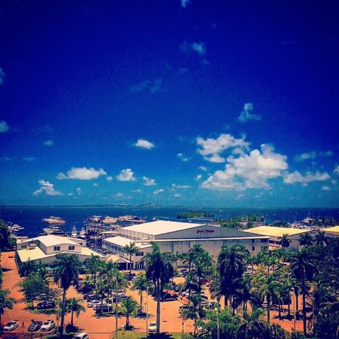 courtyard coconut creek view