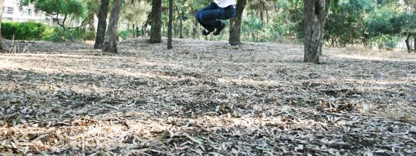 Teen jumping in eucalyptus trees park.