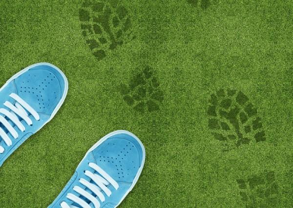 Blue Shoe print on green grassland.