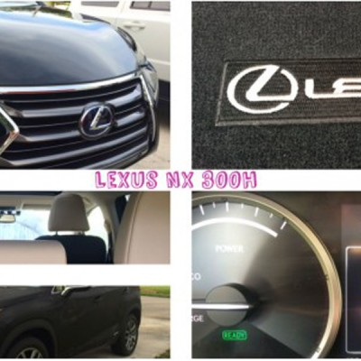 Hybrid road tripping in the Lexus NX 300h