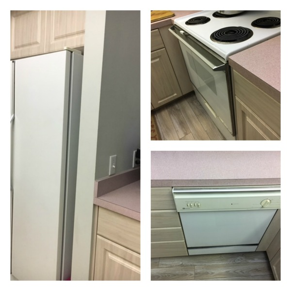 I think the pink w/black stainless would make a great combo.
