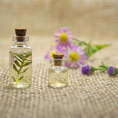 Zippy's 5 favorite uses for essential oils